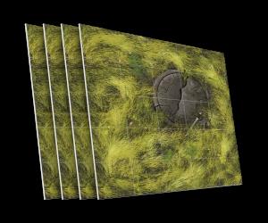 4 karty z rytualną kamienną płytą