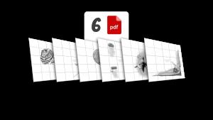 6 plików PDF | wersja monochromatyczna | 300 dpi | ze znakiem wodnym